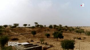 ENVOYÉ SPÉCIAL / FRANCE 2.Rana Ram Bishnoï, l'homme qui fait verdir le désert (ENVOYÉ SPÉCIAL  / FRANCE 2)