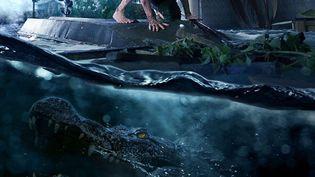 """Les films d'horreur et d'épouvante rencontrent un grand succès chez les adolescents, et les blockbusters hollywoodiens ciblent souvent l'été pour sortir ces films. Le dernier opus en date, """"Crawl"""", signé du réalisateur français Alexandre Aja, sort en salles le 24 juillet prochain. (Paramount Pictures)"""
