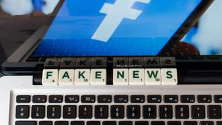 Illustration Facebook et fausses nouvelles    (RICCARDO MILANI / HANS LUCAS)