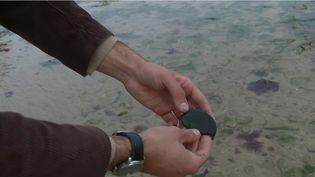 Plusieurs passionnés sillonnent les plages du Débarquement à la recherche d'objets de collection cachés sous le sable. (FRANCE 2)