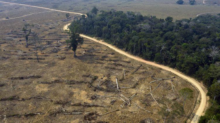 Vue aérienne de zones brûlées de la forêt amazonienne près de Porto Velho au Brésil (24 Août 2019). (CARLOS FABAL / AFP)