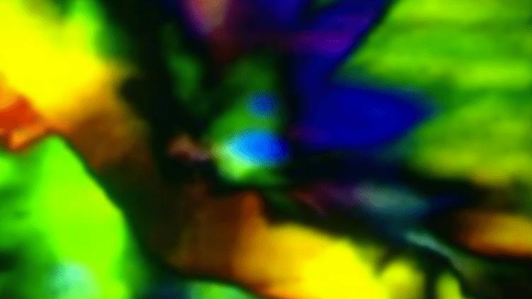 VJ Quark - Nuits sonores  (France 3/CultureBox)