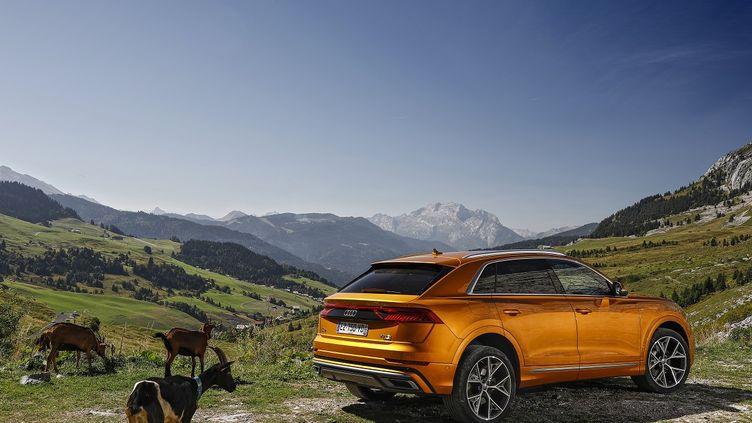 Un SUV sportif taillé pour l'aventure. (AUDI pour FRANCE INFO)