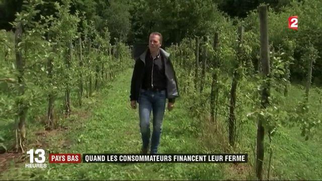 Pays-Bas : quand les consommateurs financent leur ferme