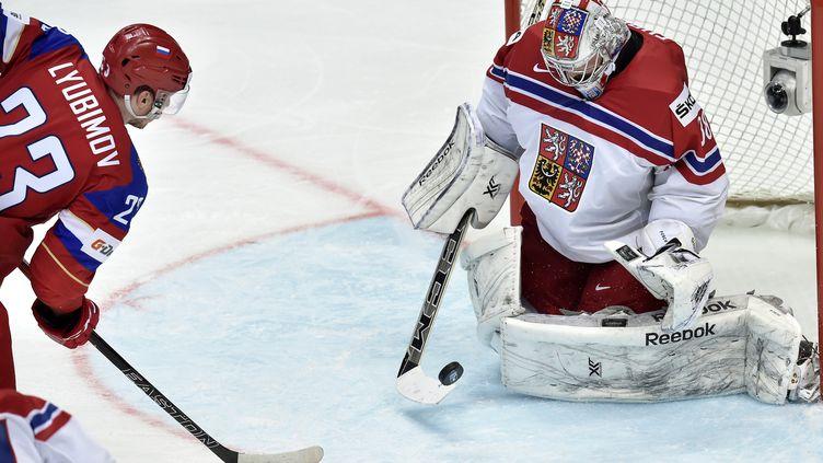 Le gardien tchèque Dominik Furch s'oppose au Russe Roman Lyubimov (YURI KADOBNOV / AFP)