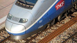 Un TGV au départ de la gare de Nice (Alpes-Maritimes), le 25 janvier 2016. (J.M EMPORTES / ONLY FRANCE / AFP)
