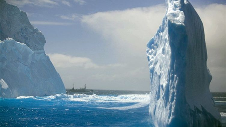 Icebergs près de l'Antarctique (archives) (AFP PHOTO - HO - Sea Shepherd Conservation Society - Barbara Veiga)