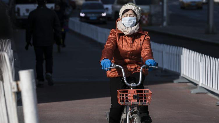 """Les données sur les masques antipollution""""ne démontrent pas un bénéfice pour la santé"""",selon l'enquête de l'Anses. (Illustration) (VINCENT ISORE / MAXPPP)"""