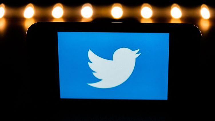 The Twitter logo on a smartphone screen, January 9, 2021 in Paris.  (XOSE BOUZAS / HANS LUCAS / AFP)