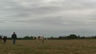 Sécheresse : les agriculteurs inquiets pour leurs productions (FRANCE 2)
