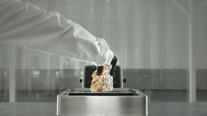 LaStan Smith Mylo d'Adidas est réalisé en cuir obtenu à partir de champignons. 2021 (Adidas)