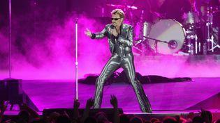 Johnny Hallyday, sur scène, au Parc des Princes (Paris), le 11 juin 2003. (FRANCOIS XAVIER MARIT / AFP)