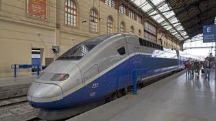 Une jeune femme affirme avoir été agressée sexuellement par un gendarme dans un train, en mars 2017, dans un TGV Marseille-Paris. (WOJTEK BUSS  / ONLY FRANCE / AFP)
