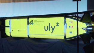 Dévoilé par l'Ifremer, lerobot Ulyx va partir à la découverte des fonds marins. (Capture d'écran / France Info)