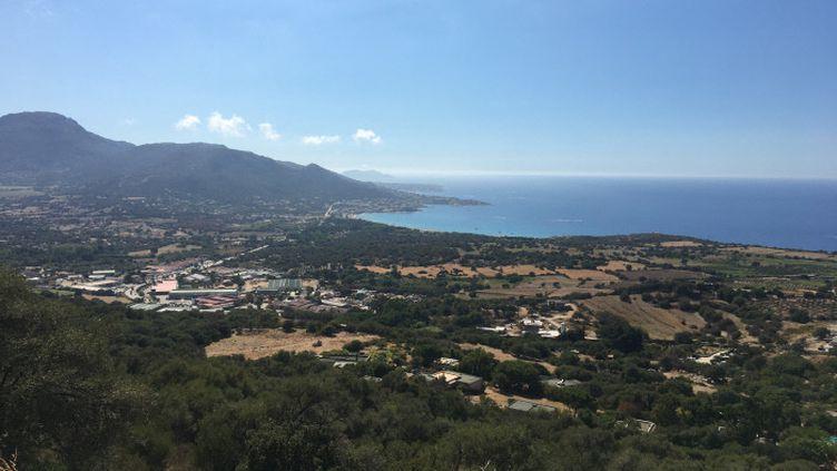 La baie de Calvi, en Haute-Corse. (MAXIME BECMEUR / FRANCE-BLEU FREQUENZA MORA)