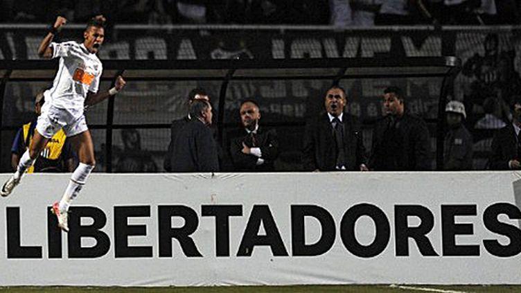Neymar exulte (VANDERLEI ALMEIDA / AFP)