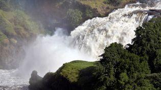 Les Murchison Falls, dans le parc national ougandais du même nom, le 14 novembre 2007. (Andrew McConnell / Robert Harding Premium via AFP)