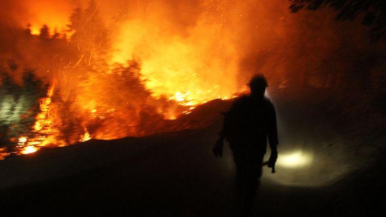 """""""Rim fire"""", l'incendie qui ravage les environs du parc de Yosemite, en Californie (Etats-Unis), le 30 août 2013. (MIKE MCMILLAN / US FOREST SERVICE / AFP)"""