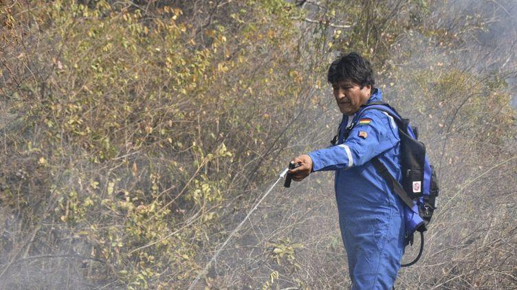 Le président bolivien, Evo Morales, en train de combattre un incendie situé en Amazonie, le 28 août 2019. (HO / MINISTERIO DE COMUNICACION DE BO / AFP)