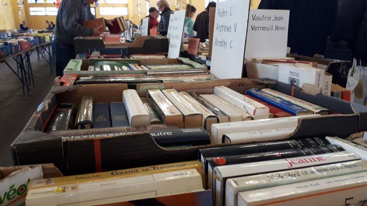 Des livres exposés dans une foire aux livres. (STÉPHANIE PERENON / FRANCE-BLEU BOURGOGNE)