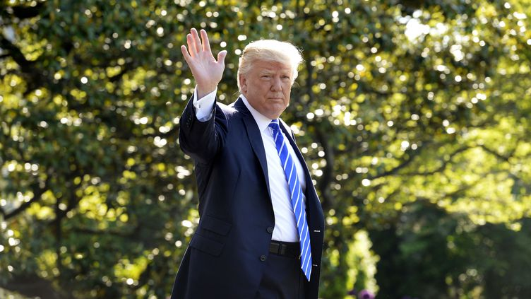 Donald Trump, dans le jardin de la Maison Blanche, à Washington (Etats-Unis), le 17 mai 2017. (OLIVIER DOULIERY / AFP)