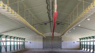 Vide sanitaire dans les élevages de canards et les fermes du sud-ouest pour éradiquer la grippe aviaire. Ici, dans un élevage de canards de Sainte-Radegonde (Gers). (SEBASTIEN LAPEYRERE / MAXPPP)