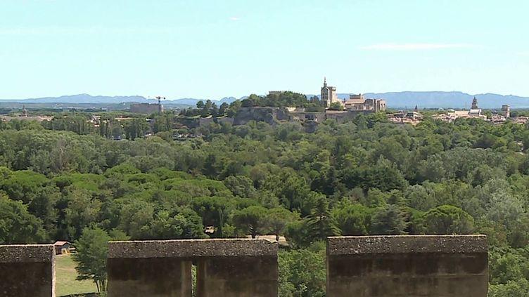 Découvrezun jardinmagnifiquede Villeneuve-Lès-Avignon, dans le Gard. (CAPTURE D'ÉCRAN FRANCE 3)