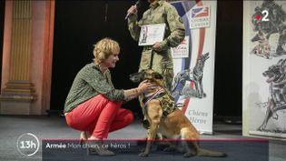 Armée : les chiens soldats, véritables héros (FRANCE 2)