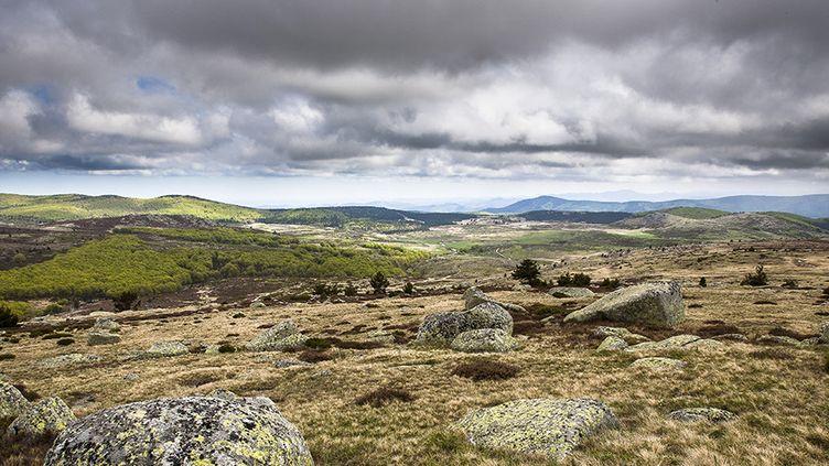 Mont Lozère, Parc National des Cévennes  (AFP)