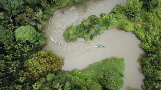 Des gardes-forestiers patrouillent dans l'écosystème Leuser, une zone forestière située au nord de Sumatra, en Indonésie (photo d'illustration). (CHAIDEER MAHYUDDIN / AFP)