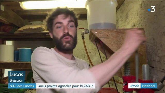 Notre-Dame-des-Landes : quels projets agricoles pour la ZAD ?