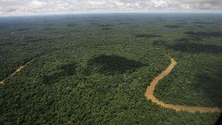 Vue aérienne du parc de Yasuni, en Equateur, le 17 mai 2007. (DOLORES OCHOA / AP / SIPA)