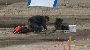 Un archéologue àSaint-Sulpice-de-Royan (Charente-Maritime), où devait se construire un lotissement. (FRANCE 3)