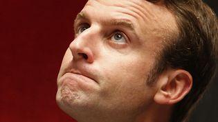 Emmanuel Macron devant les députés à l'Assemblée nationale le 18 novembre 2014. ( CHARLES PLATIAU / REUTERS)