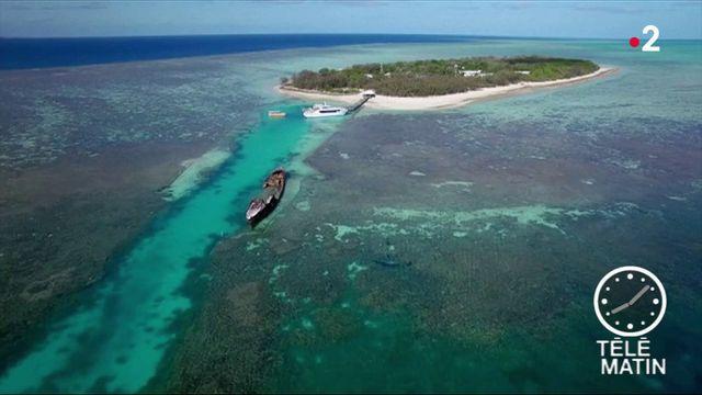Australie : 372 millions d'euros pour protéger la Grande barrière de corail