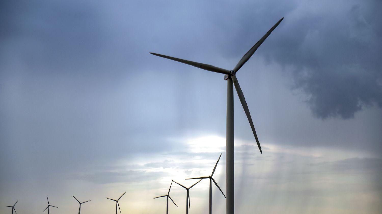 """Électricité : les """"offres vertes"""" se développent mais n'ont pas toutes les mêmes effets sur l'environnement"""