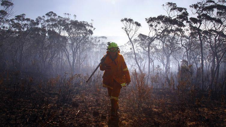 Une femme pompier australienne dans les montagnes Bleues, à 70 km à l'ouest de Sydney (Australie), le 23 octobre 2013. (DAVID GRAY / REUTERS)