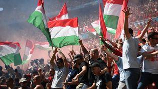 Plus de 60 000 supporters hongrois ont donné de la voix contre l'équipe de France à l'Euro 2021, samedi 19 juin. (FRANCK FIFE / POOL)