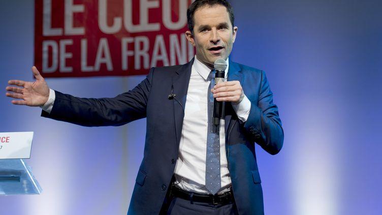 Benoît Hamon en Martinique, le 12 mars 2017 (LIONEL CHAMOISEAU / AFP)