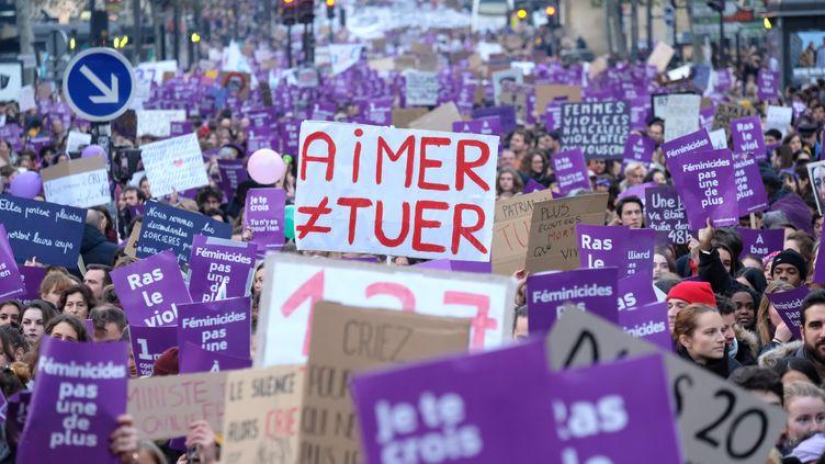 La marche contre les violences faites aux femmes à Paris, le 23 novembre 2019. (NATHANAEL CHARBONNIER / RADIO FRANCE)