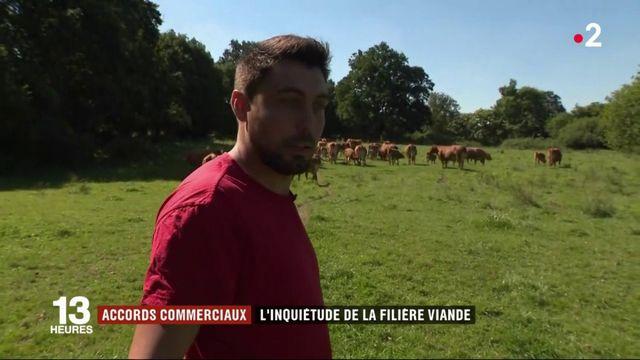 Accord Mercosur : les agriculteurs en colère