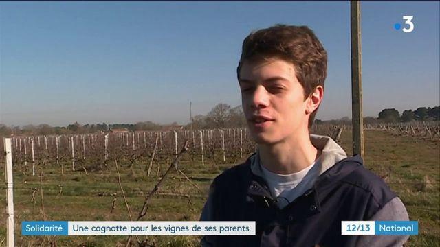 Solidarité : une cagnotte pour les vignes de ses parents