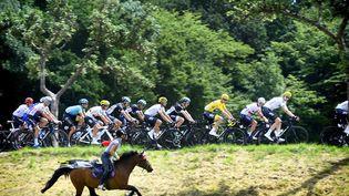 Le peloton du Tour de France, suivi par une fan de vélo à cheval, le 6 juillet lors de l'étape entre Vesoul et Troyes. (YORICK JANSENS / BELGA MAG / AFP)