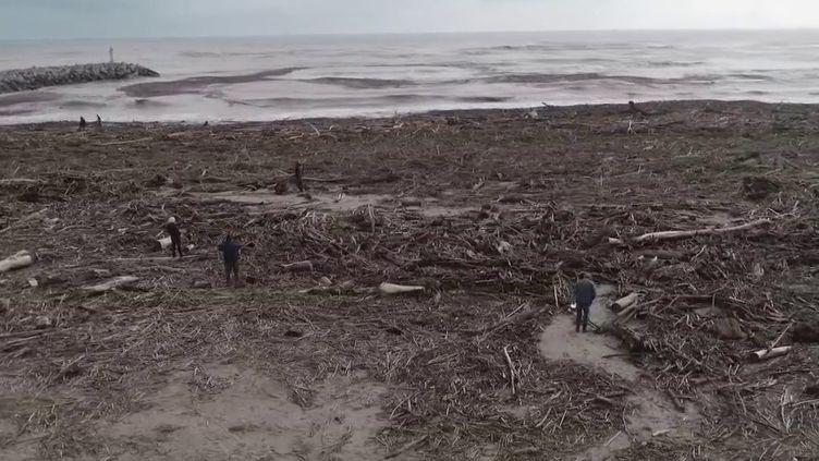 La tempête Gloria a touché le littoral français. La plage de Fleury (Aude) a été impactée. Le maire s'indigne. (France 2)