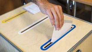 Des élections législatives se tiennent dimanche 9 septembre en Suède. (JONATHAN NACKSTRAND / AFP)