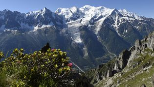 Trois alpinistes sont morts dans le massif du Mont-Blanc, dimanche 17 août 2014. (PHILIPPE DESMAZES / AFP)