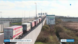 Depuis début décembre,d'énormes embouteillages de camionssontvisibles près de Calais (Pas-de-Calais), à proximité du tunnel sous la Manche. (France 3)