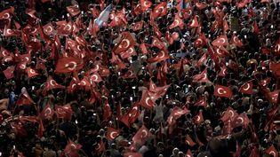 (Manifestation en faveur du président turque Erdogan lundi à Instanbul © AFP / ARIS MESSINIS)