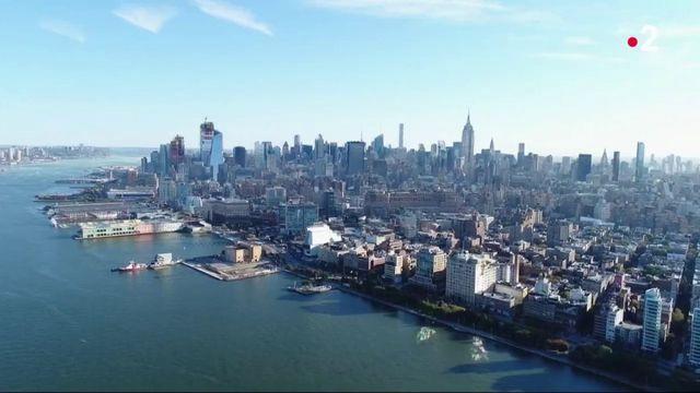 New York : 1 milliard d'huîtres pour protéger la baie