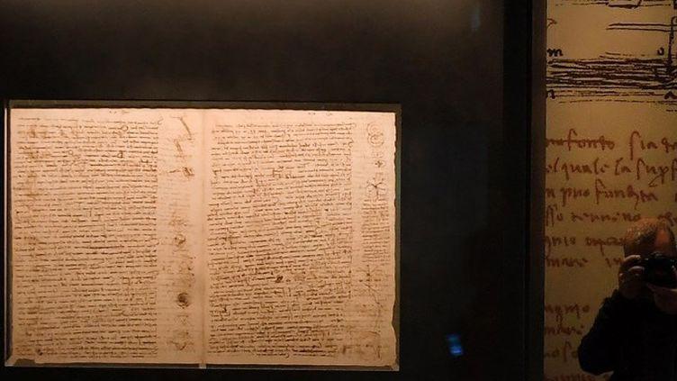 Le Codex Leicester de Léonard de Vinci  (Tiziana FABI / AFP)